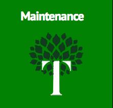Trey's Landscape Maintenance